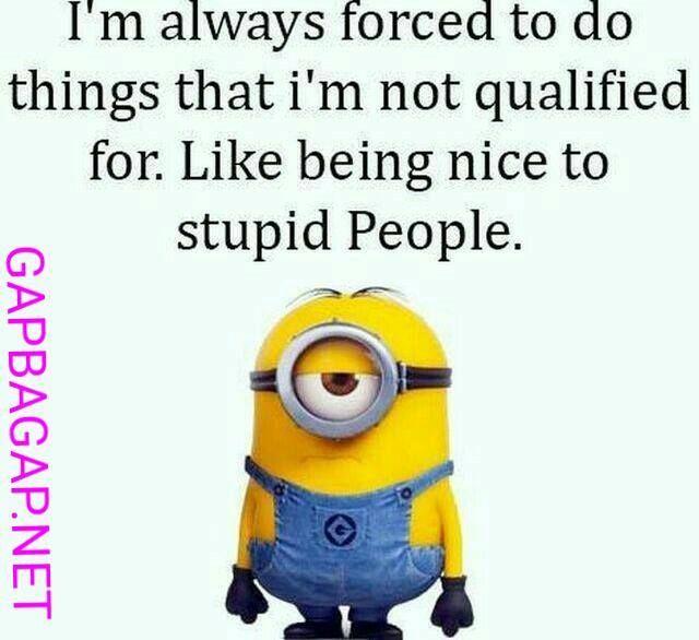 Beautiful Funny Minion Joke About Stupid People