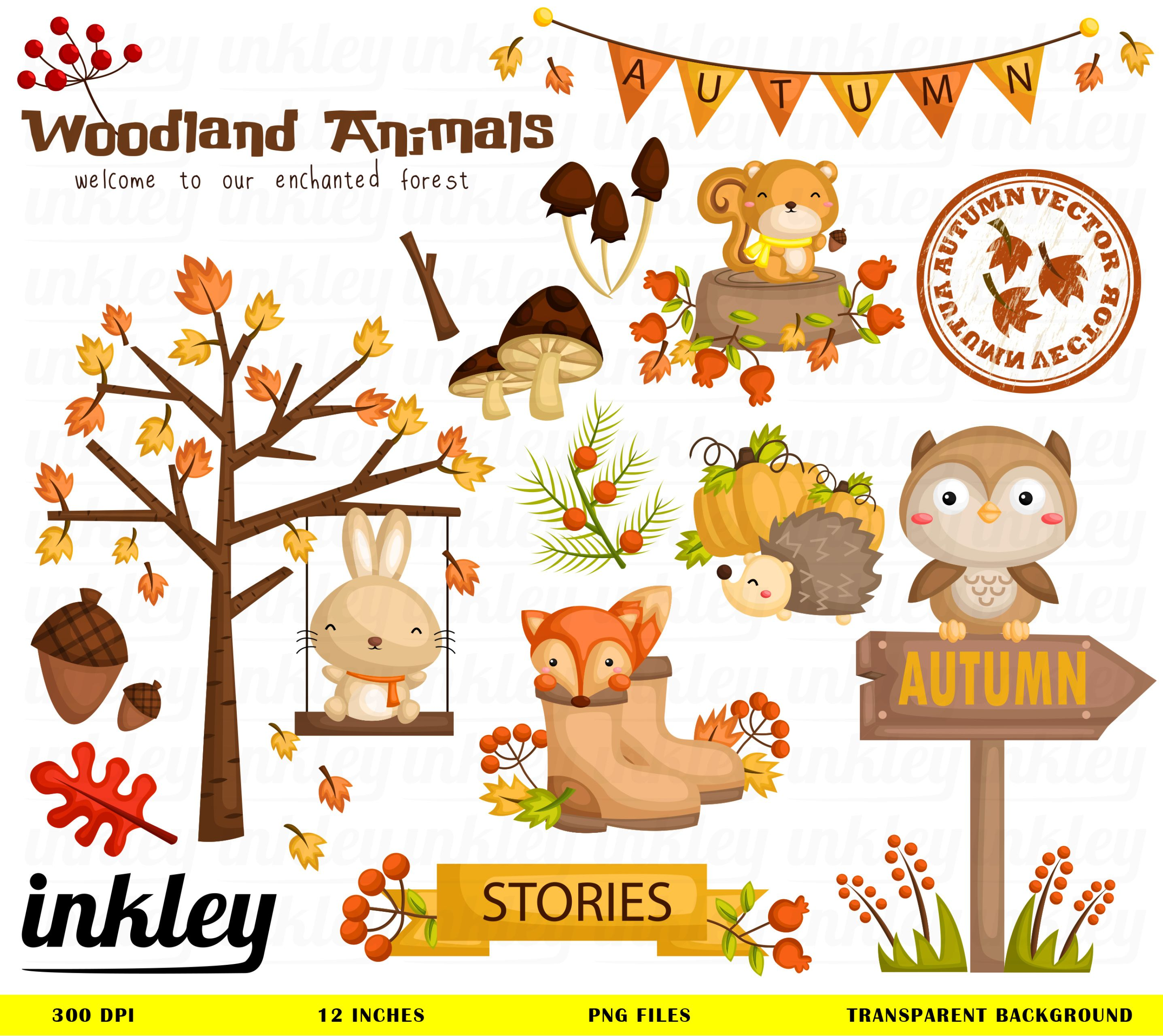 Ready To Use Woodland Animal Illustration And Clipart For Personal And Commercial Use Autumn Animals Animal Clipart Cute Doodles Drawings