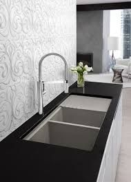 Porcelain Undermount Kitchen Sinks Rectangle Interior Long Black With Double Sink Placed On The