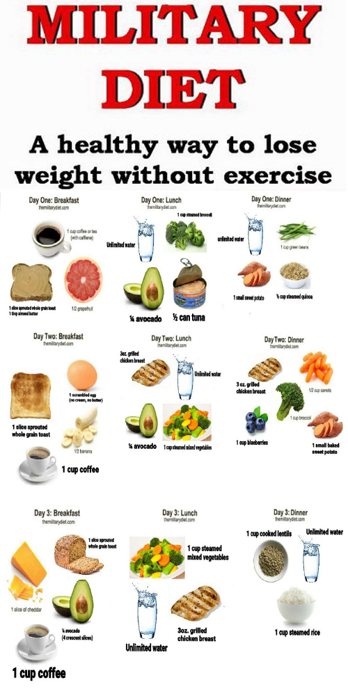 can diet lose belly fat