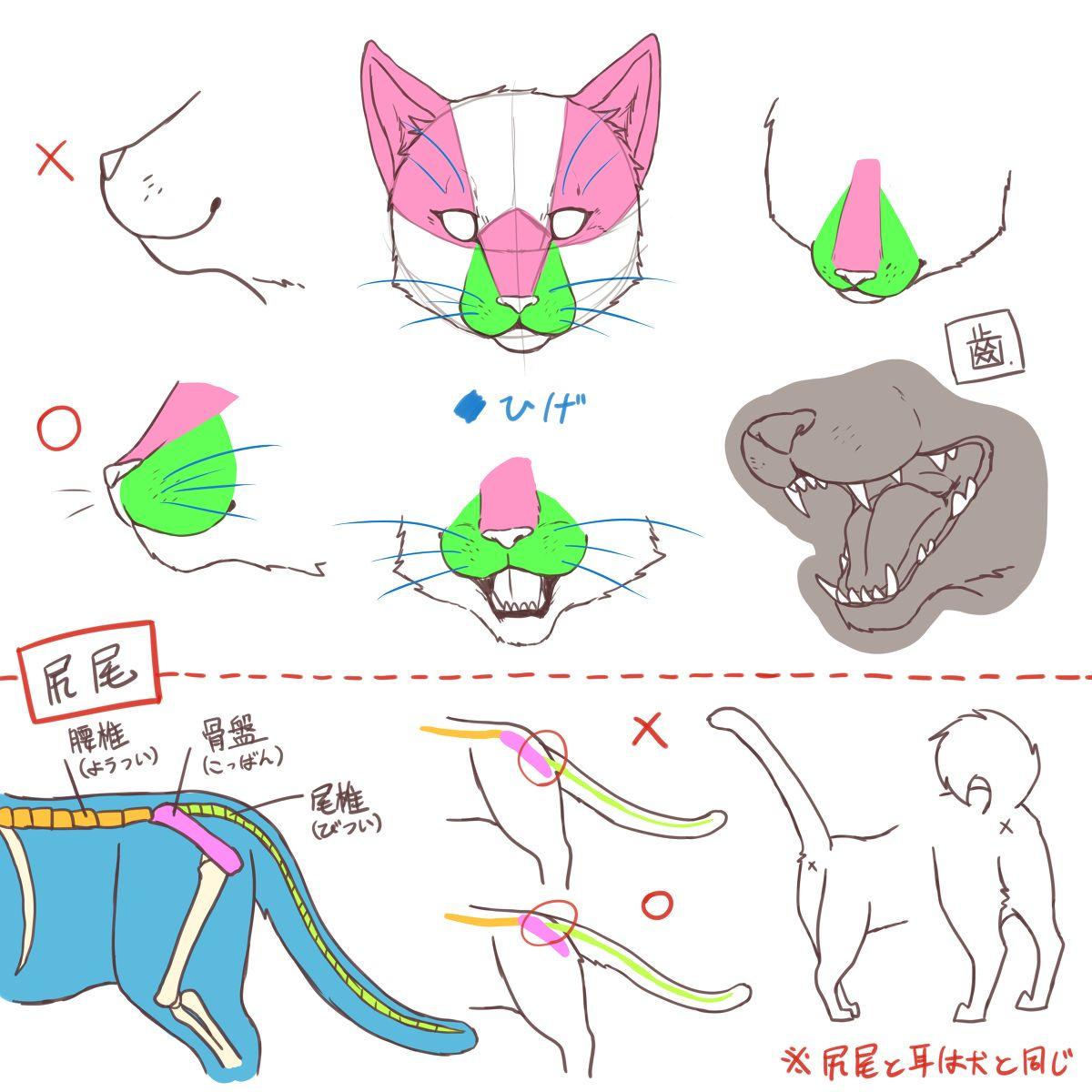 2018 年の「【自己流】犬と猫の描き方 [4] | how to」 | pinterest | 猫