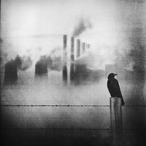 Cold, Alone In A Void From An Endless World by Zewar Fadhil. °