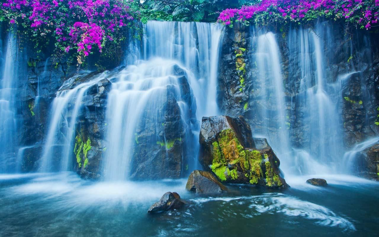 40 Live Wallpapers In 4k Full Hd For Free Download In 2020 With Images Waterfall Wallpaper Waterfall Pictures Waterfall