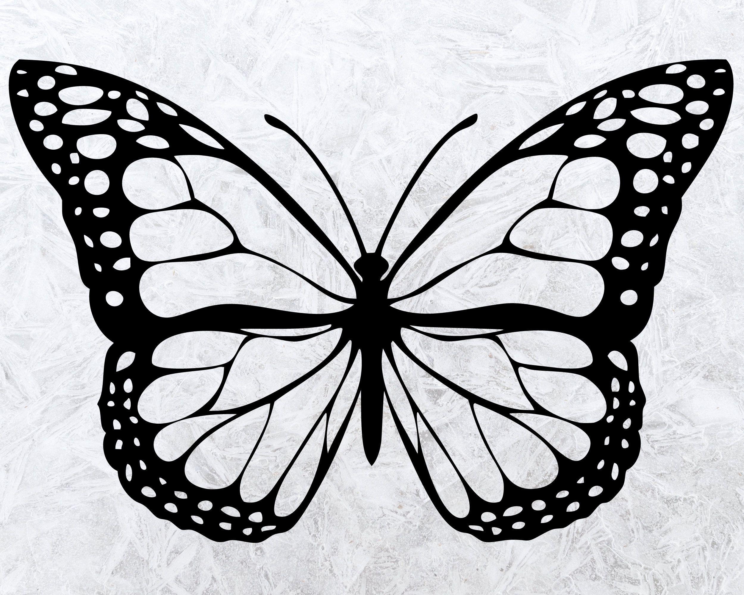 Butterfly Svg Bundle Butterfly Svg File Layered Butterfly Etsy In 2021 Butterfly Coloring Page Butterfly Drawing Butterfly Clip Art [ 2000 x 2500 Pixel ]