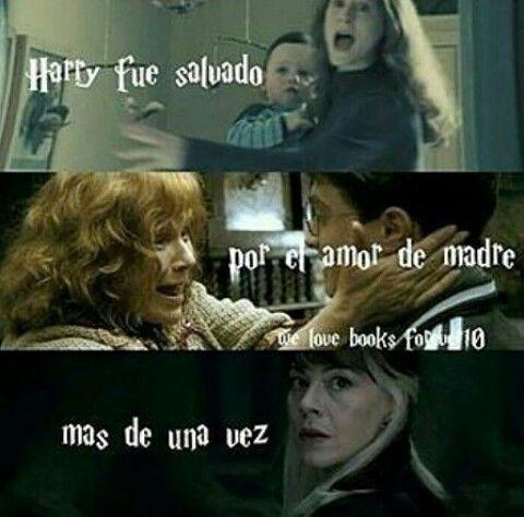 El Amor Memes De Harry Potter Harry Potter Peliculas De Harry Potter