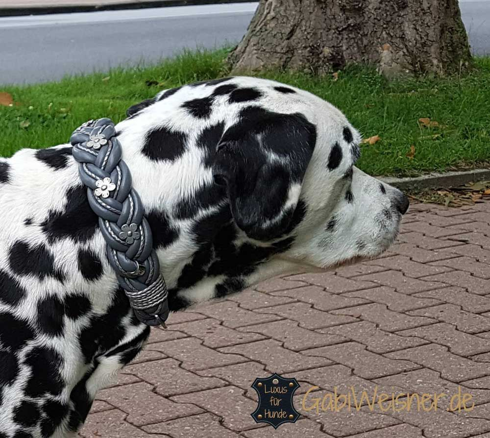 Hundehalsband Nappaleder breit geflochten