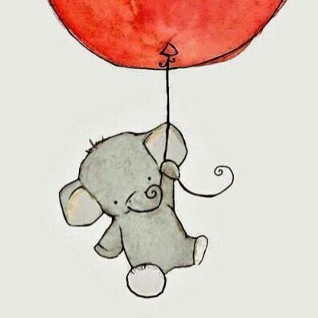 Güzel fil
