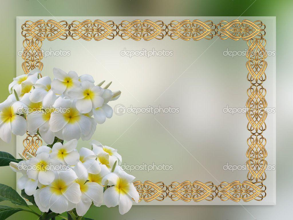 Wedding Invitation Backgrounds: Free Wedding Backgrounds /frames