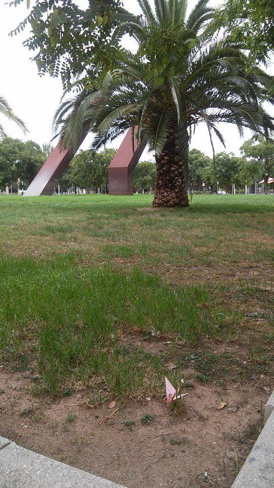 Grullas en la Ventana: Grulla viajera en el barrio Almeda de ...