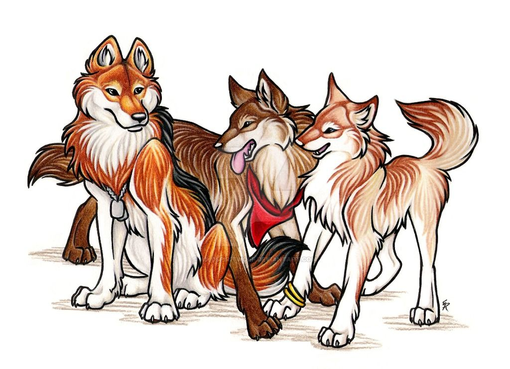 Wolf Sisters Commission Anime Wolf Drawing Anime Wolf Animated Animals