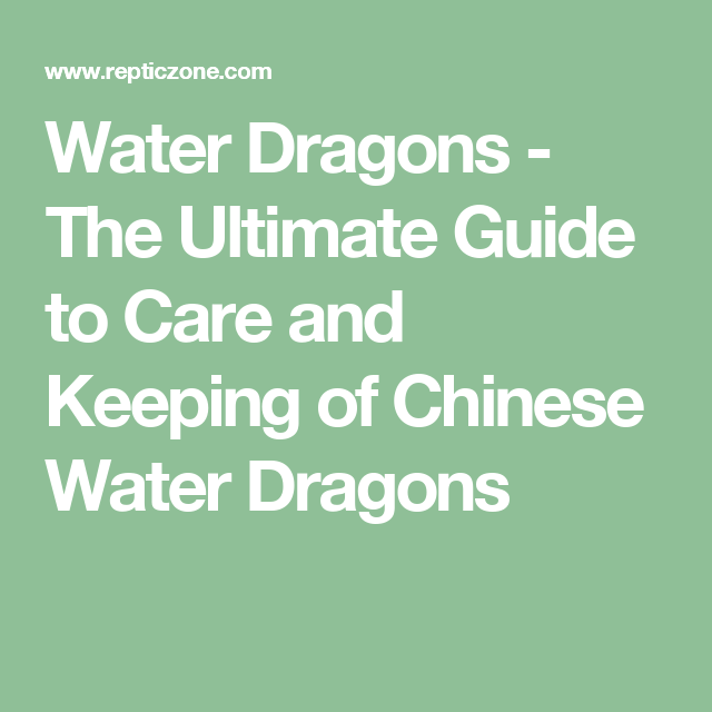 Water Dragons - The Ultimate Guide to Care and Keeping of Chinese Water Dragons