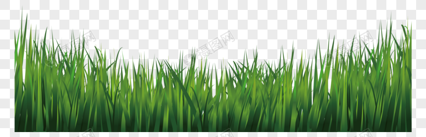 Green Grass Icon Grass Png Is About Is About Plant Commodity Herb Grass Family Green Green Grass Icon Grass Supports Png You Can Download 1166 1037 Of
