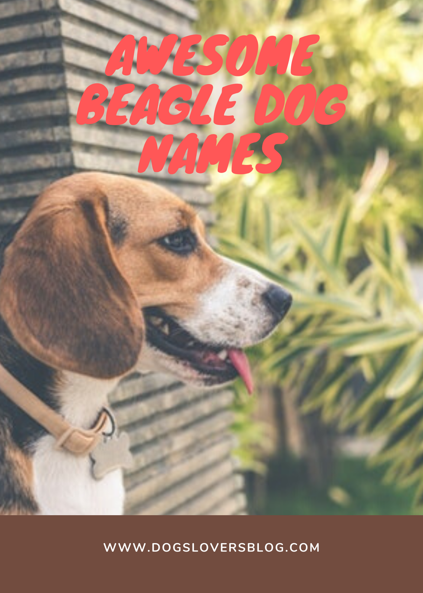 Awesome Beagle Dog Names Best Names For Beautiful Beagles In 2020 Dog Names Beagle Dog Dogs