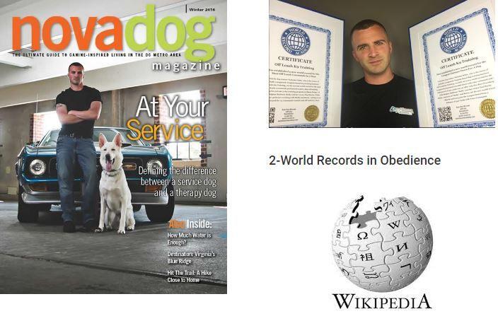 Best Dog Training Services in Fairfax Va Northern Virginia ...