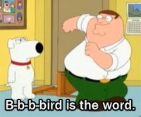 Family guy...bird bird bird, the bird is the word!