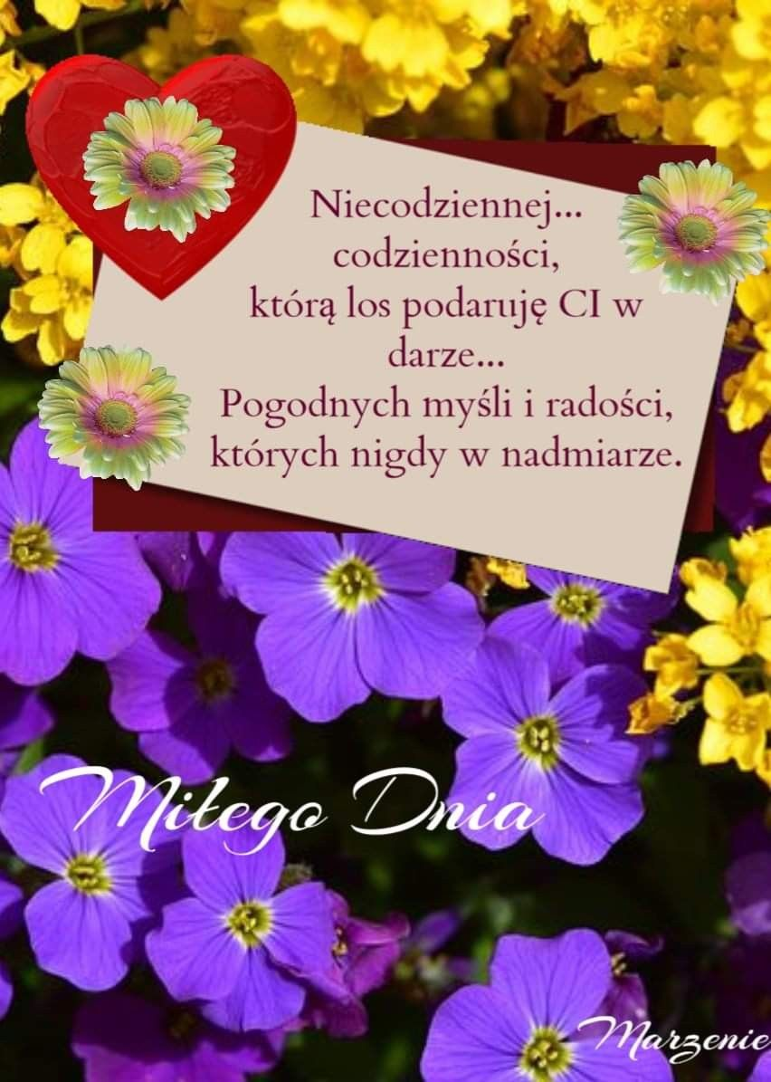 Pin By Renata Sawicka On Dzien Dobry With Images Cytaty Dzien