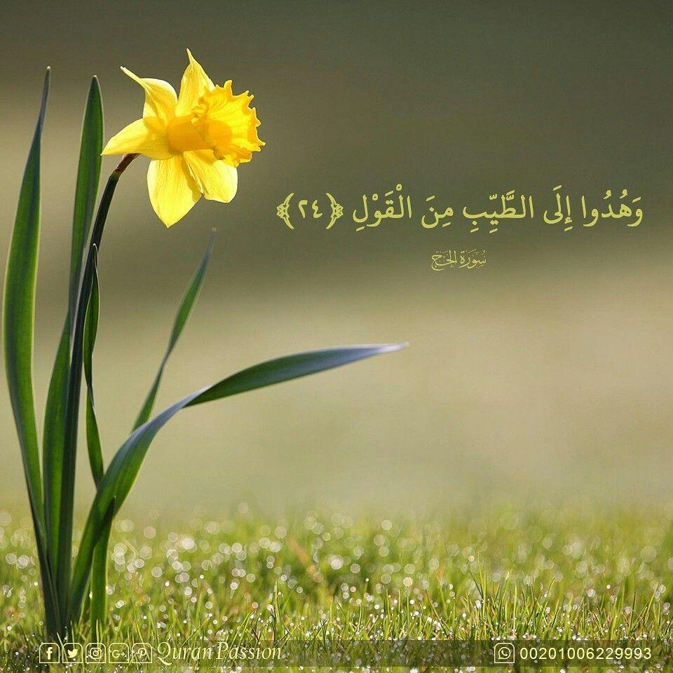 الكلام الطيب خيرا وهدايه Noble Quran Islam Quran Quran