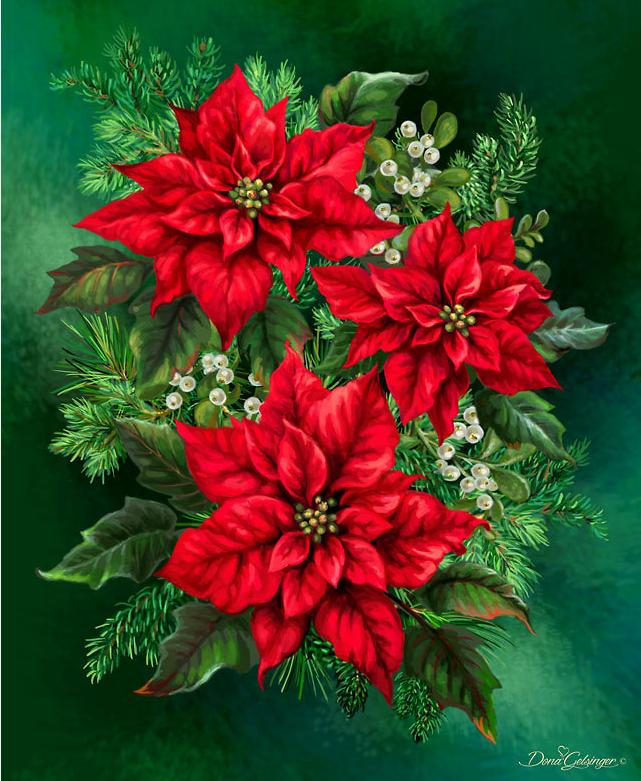 Another poinsettias by Dona.