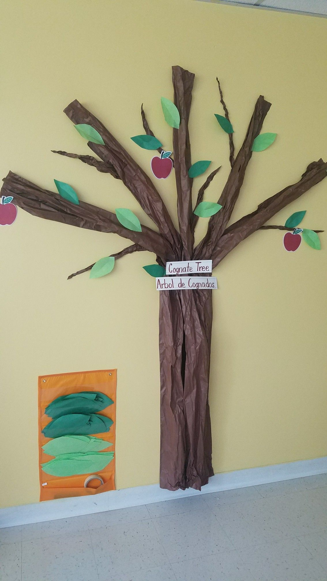 Cognate Tree Adding Spanish English Vocabulary Words On