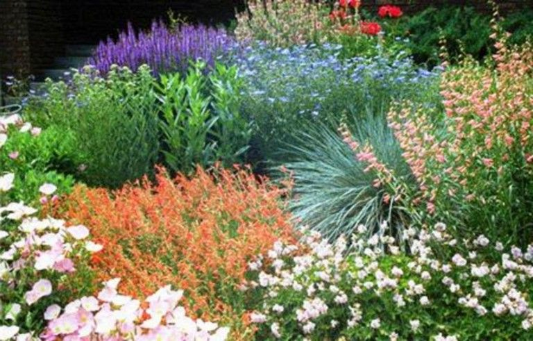 62+ Top Xeriscape Landscaping Colorado Inspirations You Need To Know – Xeriscape landscaping