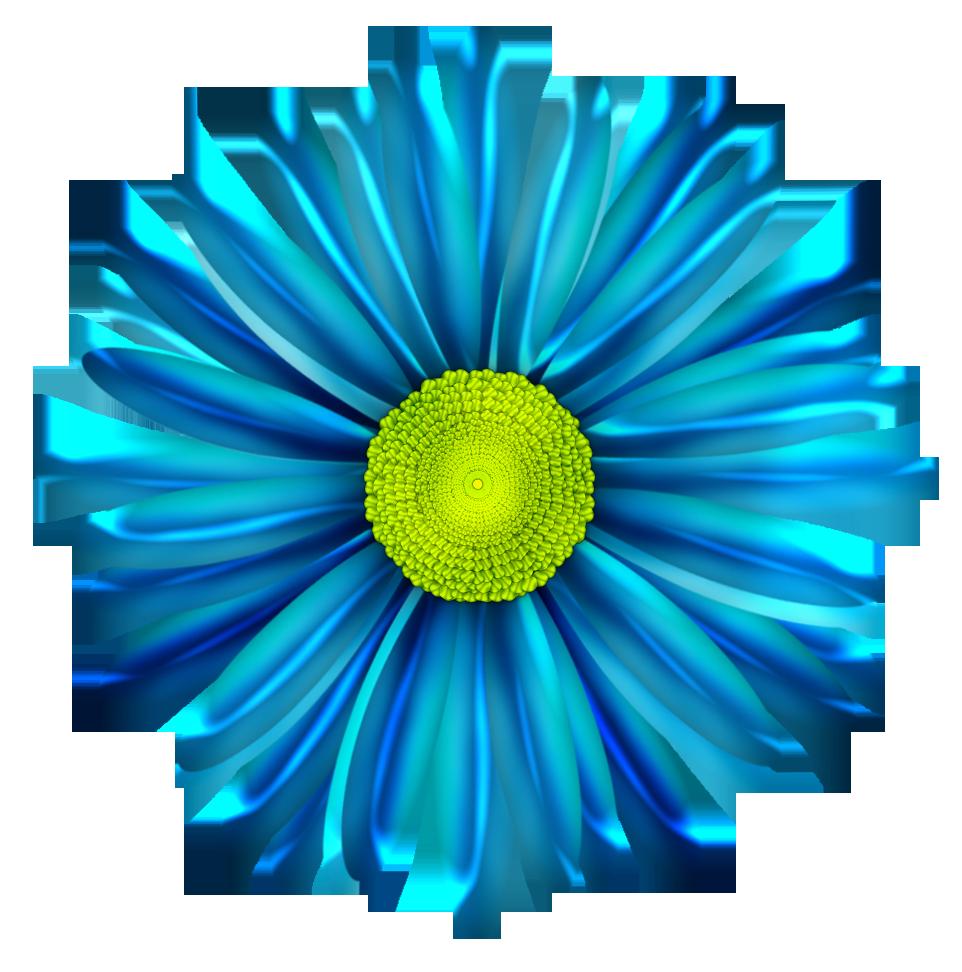 Blue Flower clipart blue daisy 6 Blue flower painting