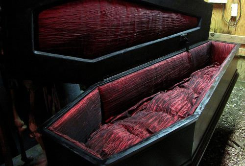 Coffin Bed This Would Be Great Decor For My Future