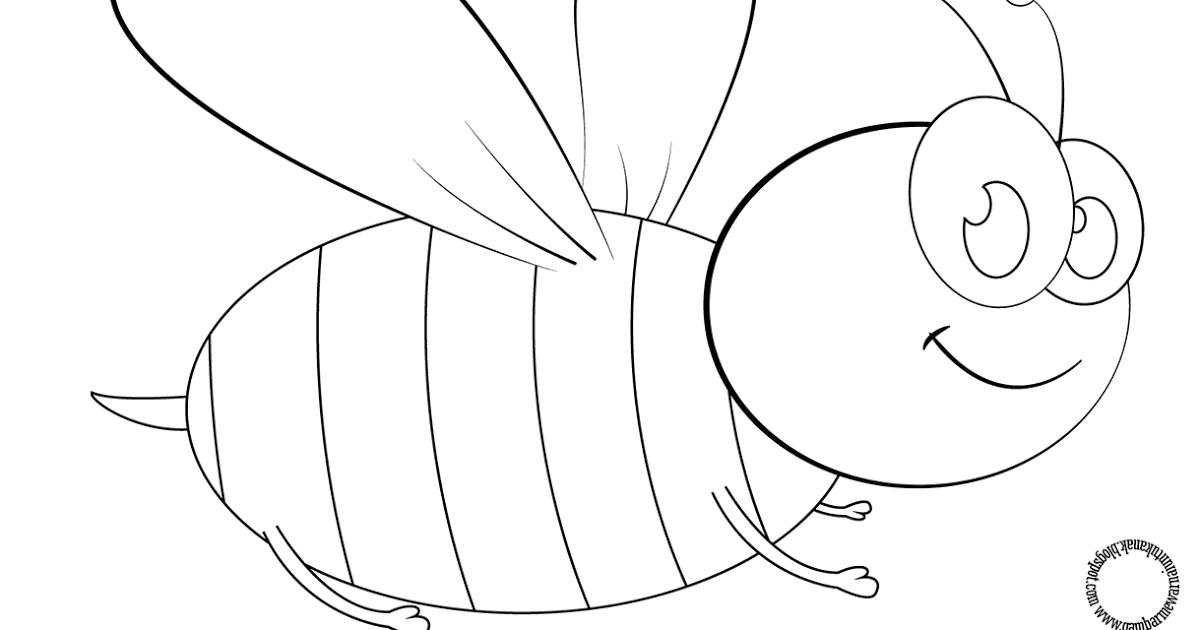 Keren 30 Gambar Dinosaurus Kartun Hitam Putih Gambar Mewarnai Kartun Lebah Untuk Anak Farid Kartun Download 5 Cara Untuk M Gambar Kartun Kartun Dinosaurus