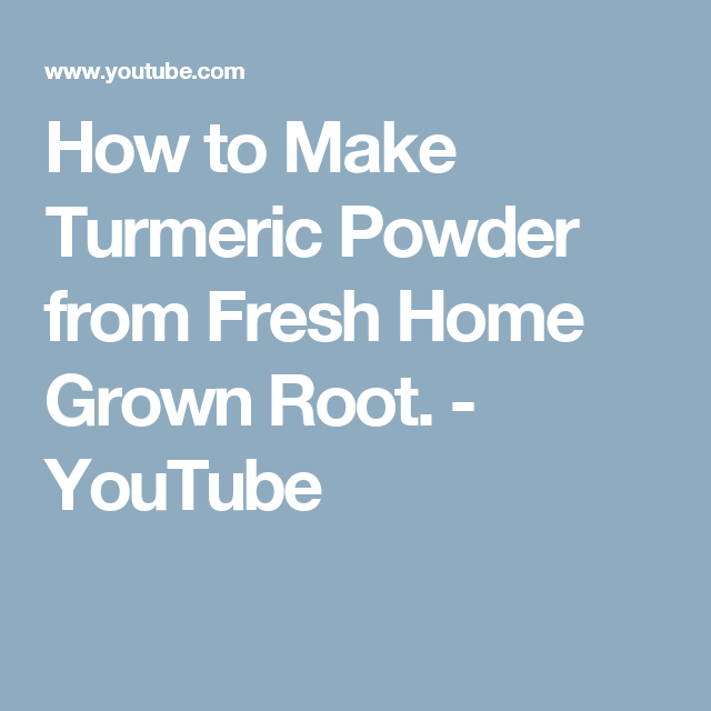How to Make Turmeric Powder from Fresh Home Grown Root. - YouTube