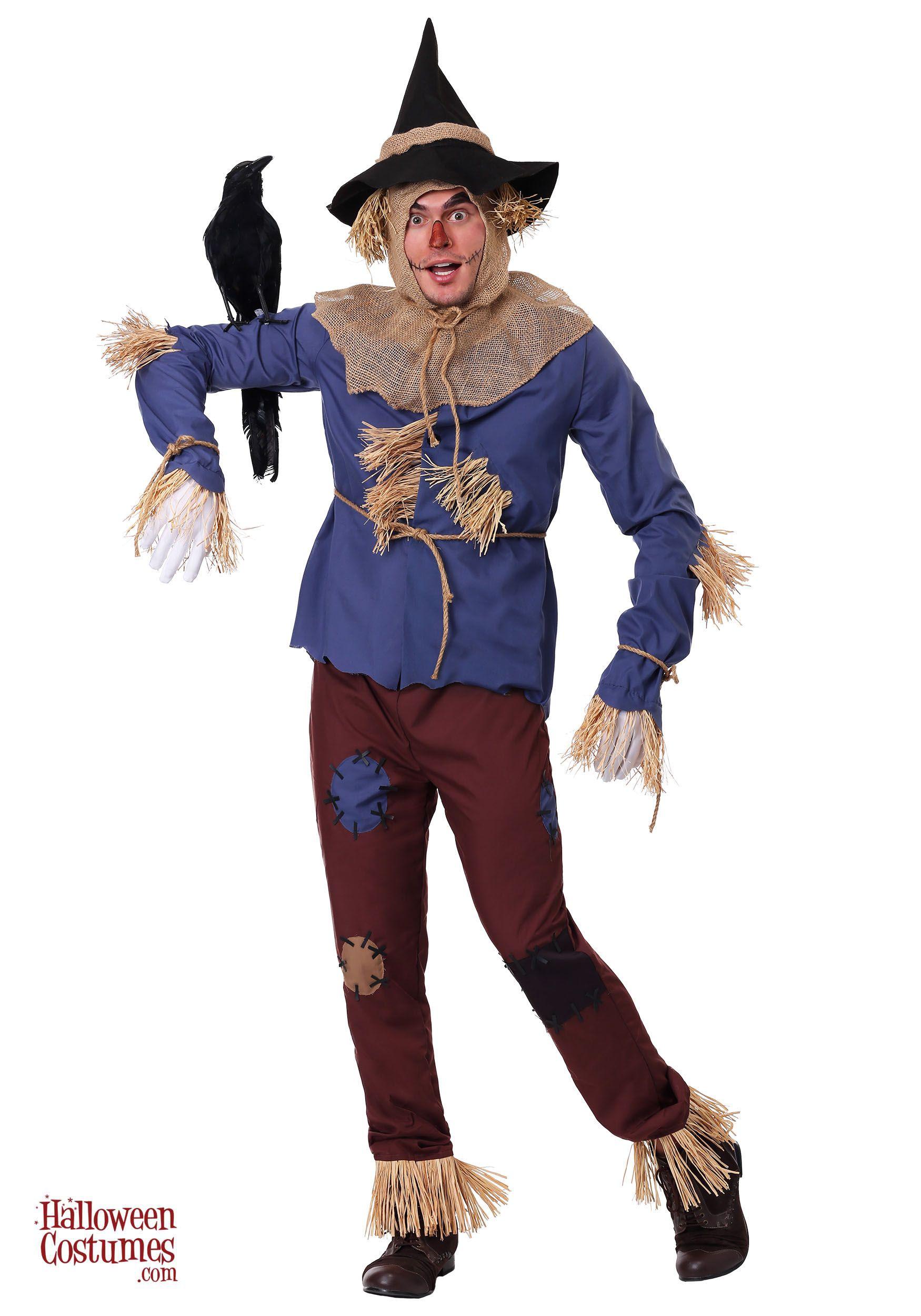 Patchwork Scarecrow Adult Costume Scarecrow costume