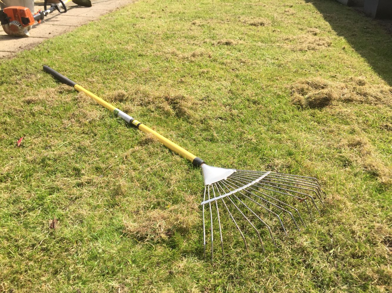 Rake Your Lawn With A Spring Tine Rake To Remove Dead Thatch And Moss This Will Improve Your Grass Over The Long Term Even If Short T Garden Tools Lawn Garden