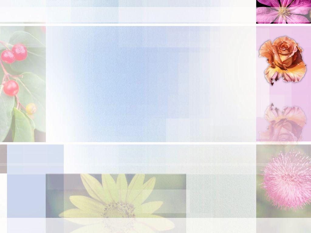 powerpoint slides slide animation ppt templates flowers slide