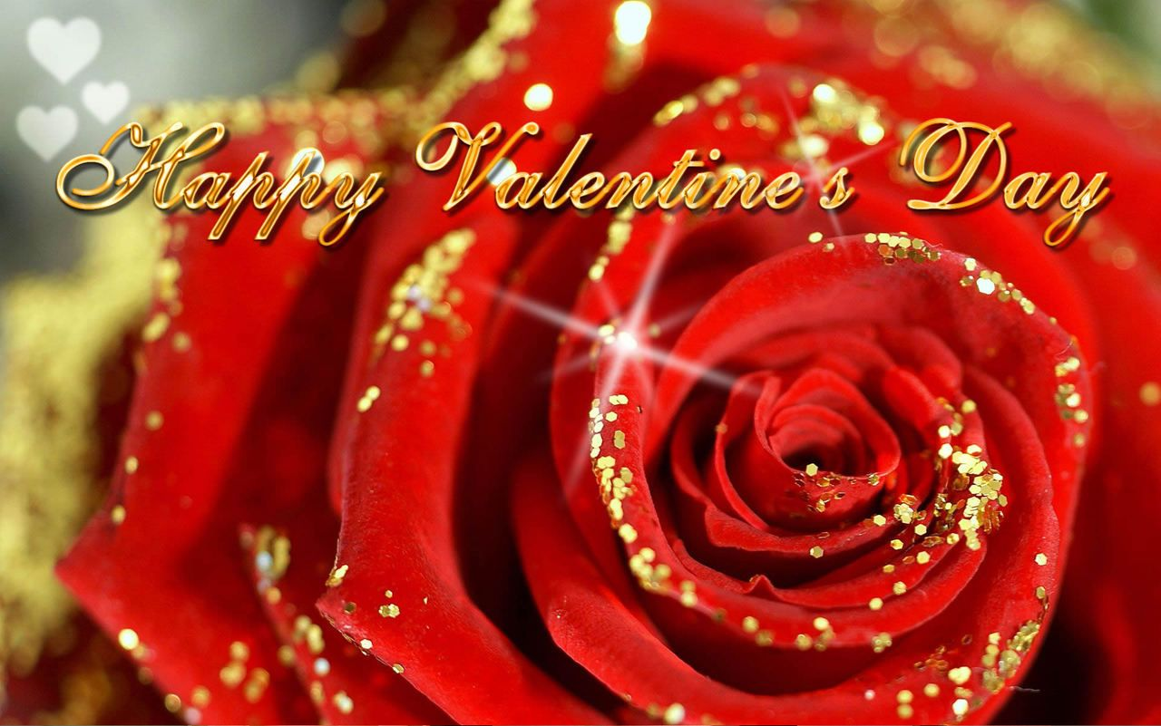 "Monna Ellithorpe-Author - ""Don't be shy to show your love, verbalise it and cushion it because it is the most beautiful and fragile gift that God has ever given to the humankind. Happy Valentines Day."" -Euginia Herlihy"