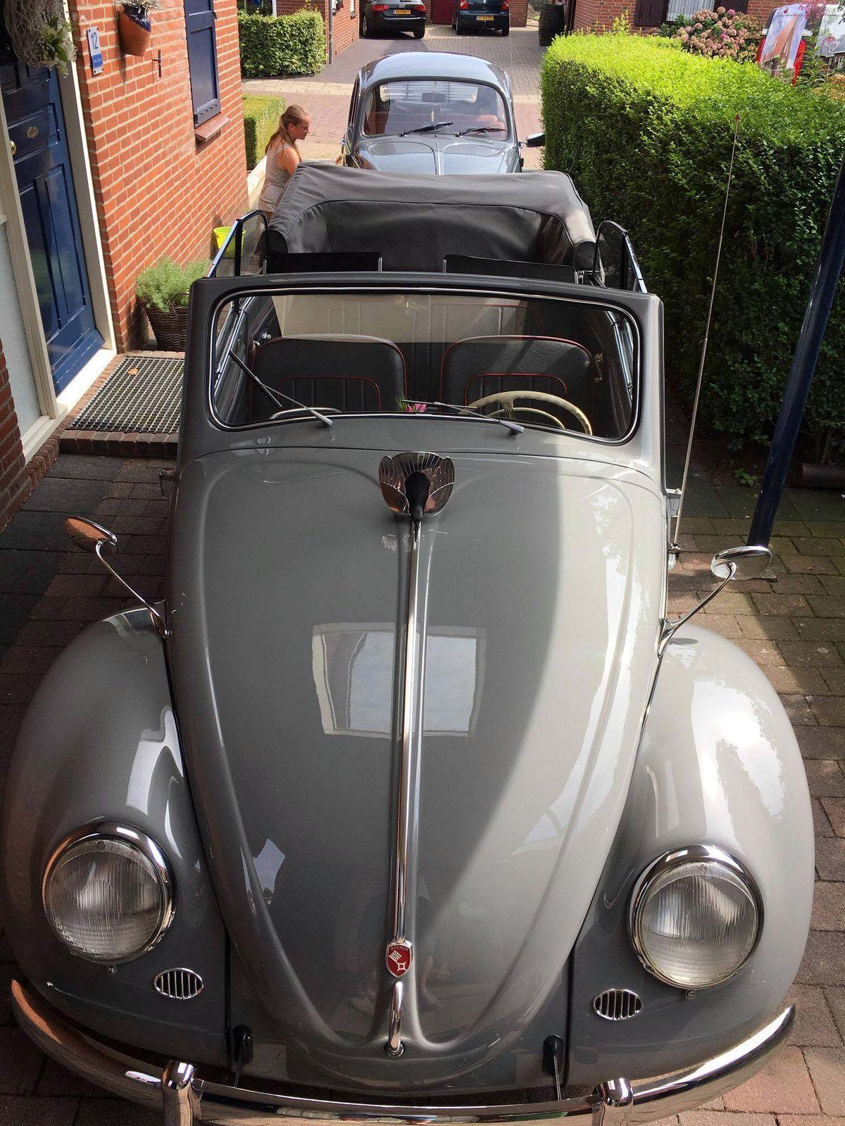 Hendrik Jan Hofman Vw Beetle Convertible Vw Beetle Classic Vw Kafer