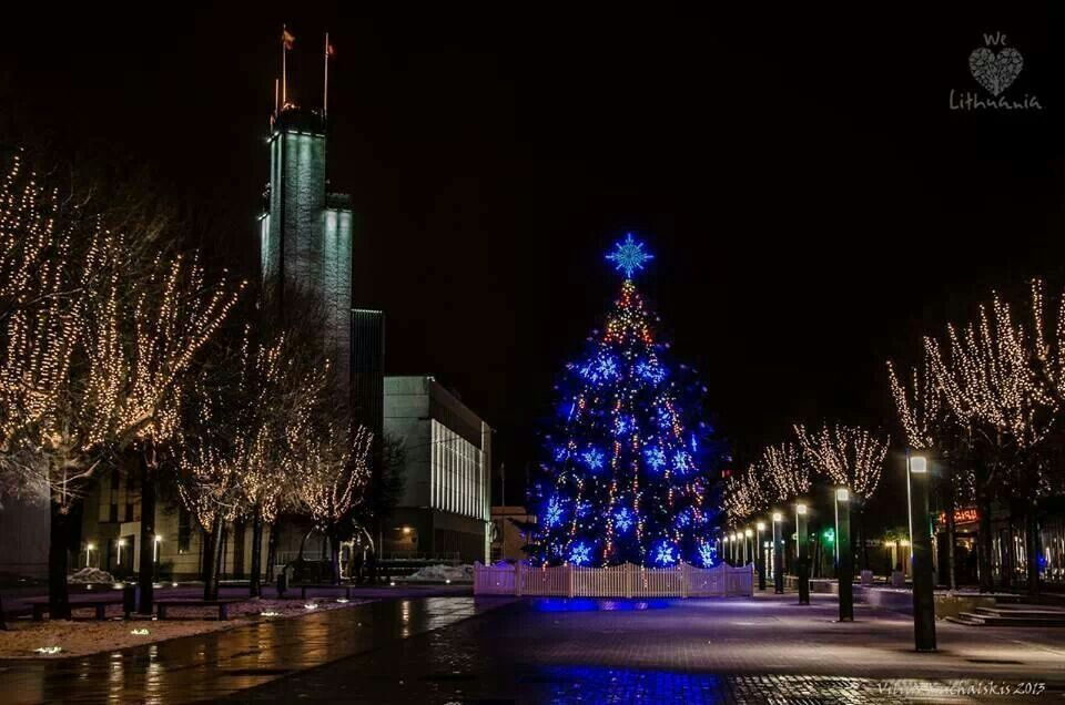 Christmas tree in Alytus Lithuania 2013 (With images