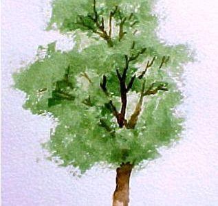 The Love Tree Watercolor 5 3 10 Baum Kleines Aquarell Aquarell