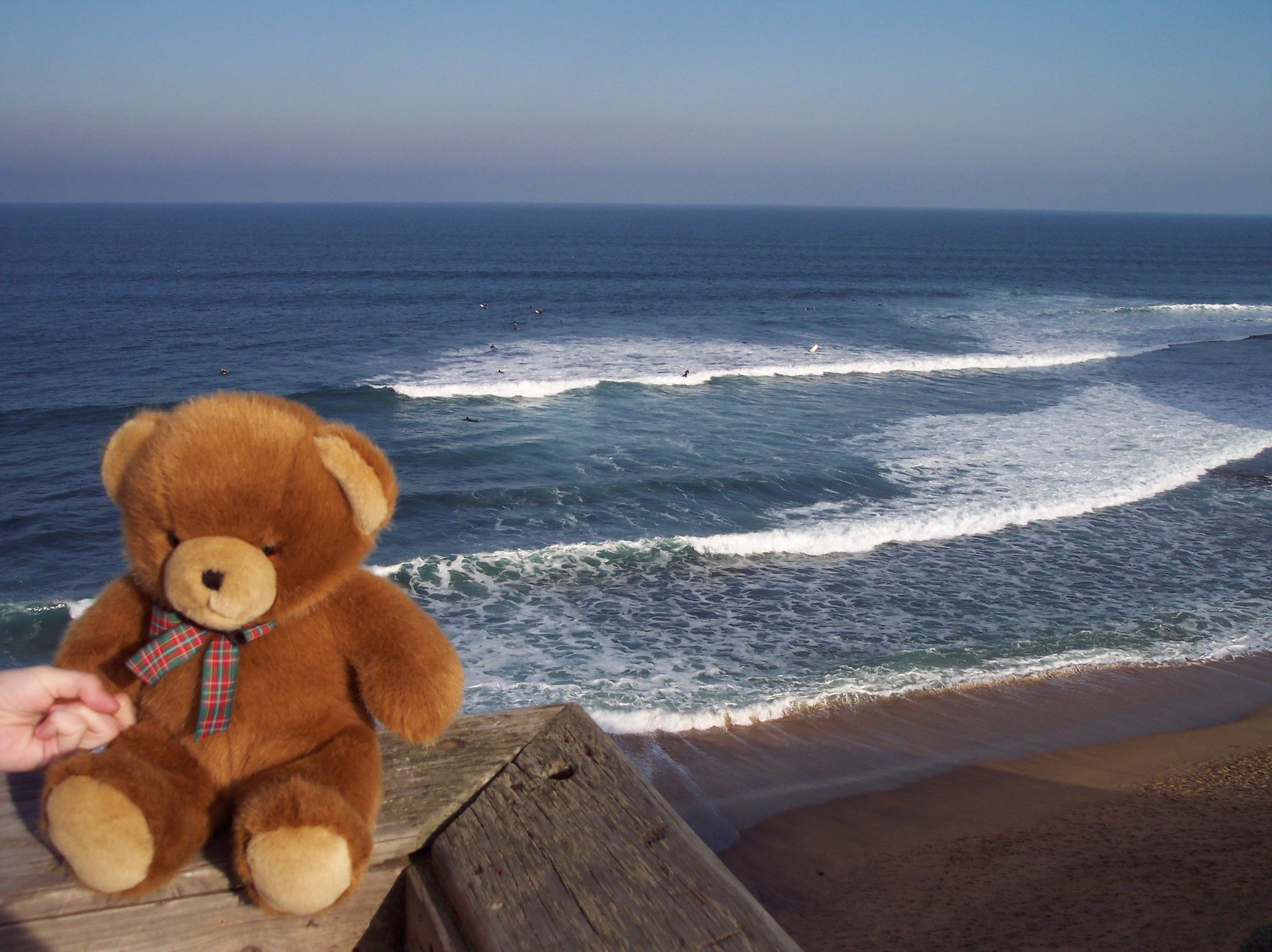 At Bells Beach. Famous for the surfing. www.marlystravels.com