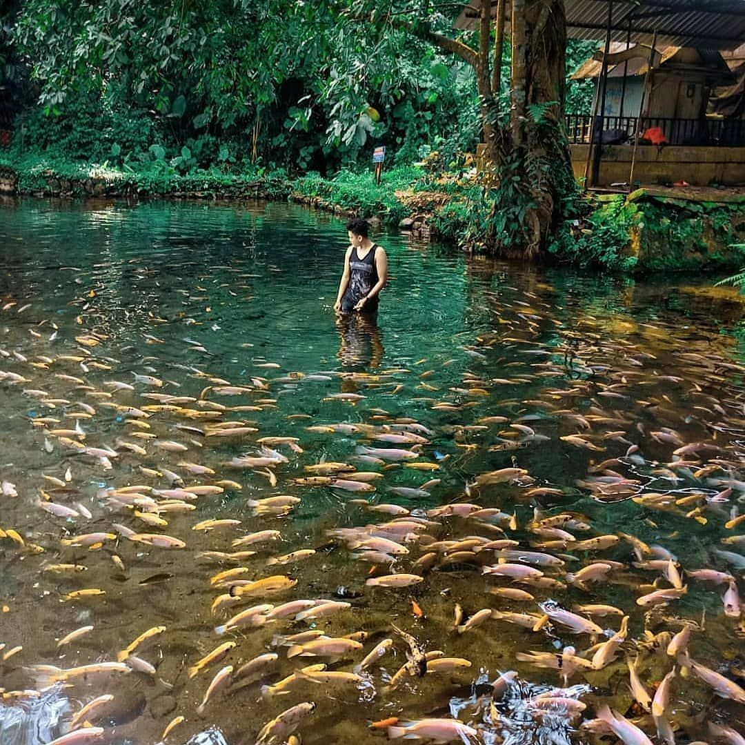 Wisata Desa Tegal Waton Semarang Jawa Tengah Di 2020