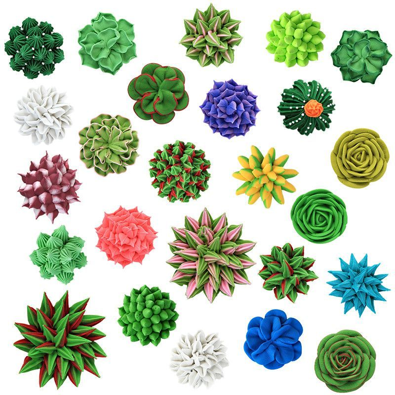 Create Lifelike Desert Desserts With Extra Large Succulent Set Royal Icing Decorations These Edible