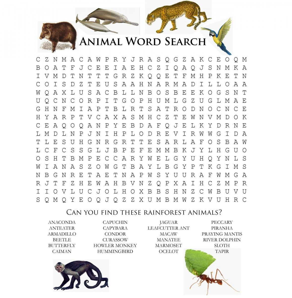 Learning Is Fun Welcome To Animal Word Scramble For Your
