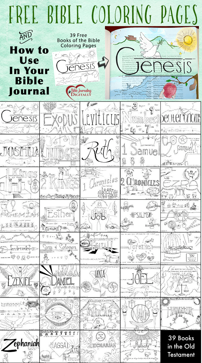 FREE Books of the Bible Coloring Pages | Free bible and Journaling
