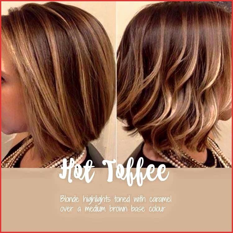 Brunette With Blonde Highlights Lovely Short Hairstyles With Highlights Short Hairstyles With In 2020 Hair Styles Short Hair Color Hair Highlights