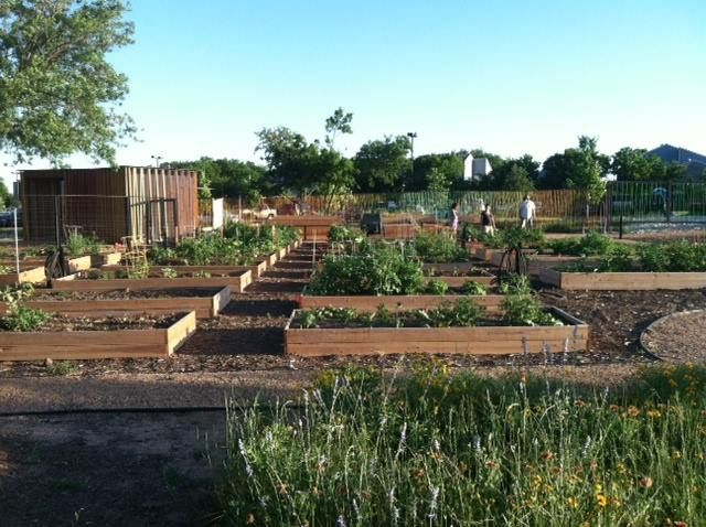 The North Austin Community Garden Seeks To Create A Community Gathering And  Work Space That Includes