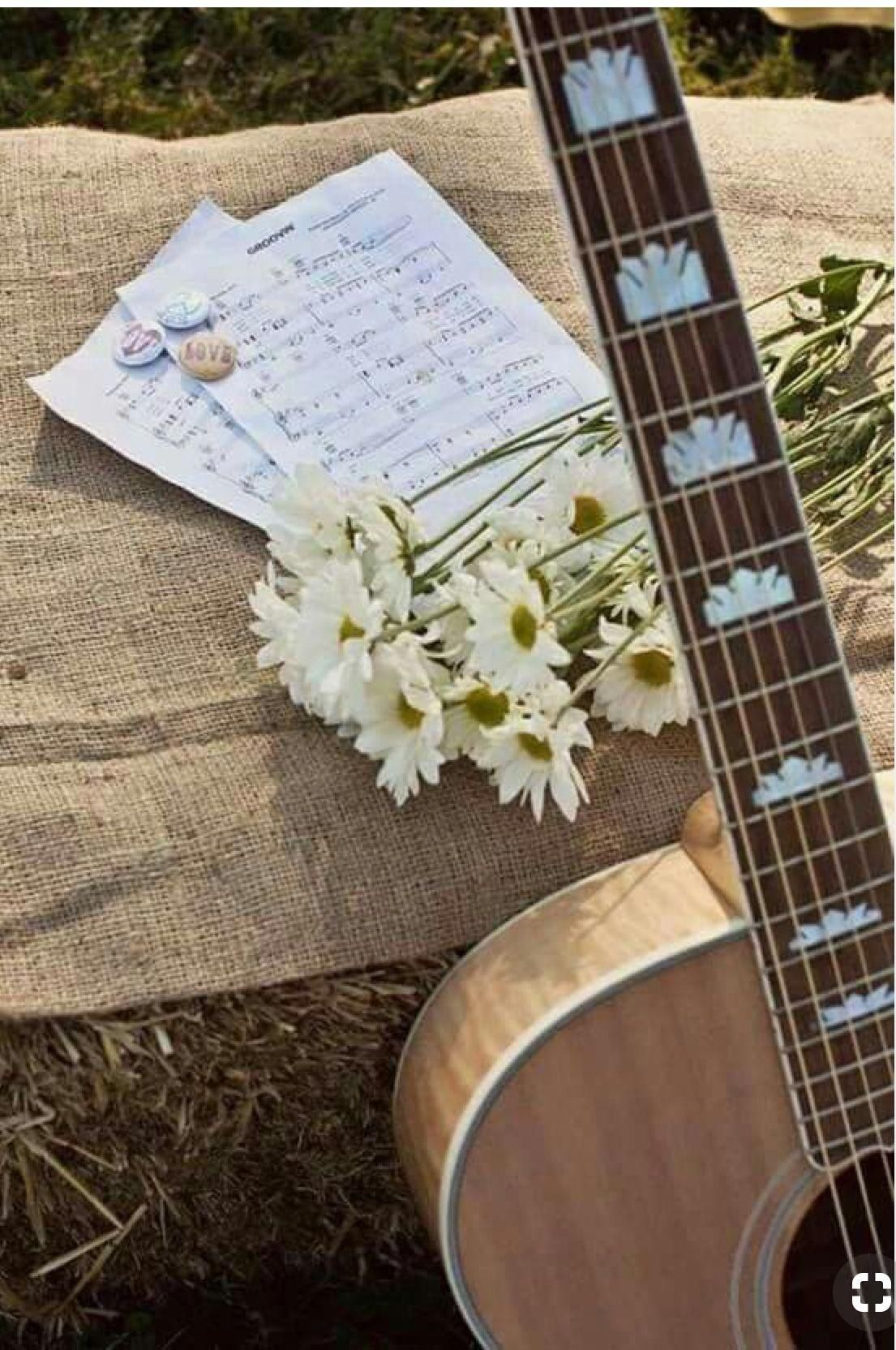 aesthetic acoustic guitars aestheticacousticguitars