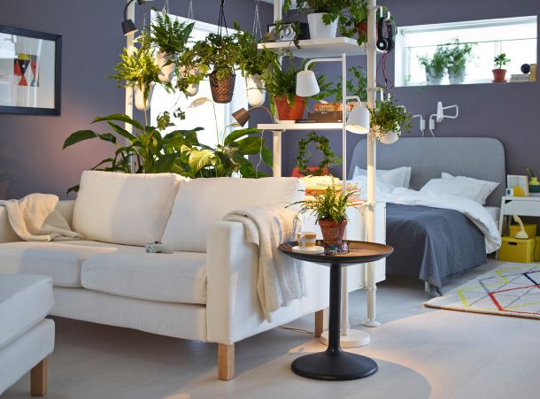 s parer une pi ce par un mur v g tal dans la maison pinterest plantes suspendues plantes. Black Bedroom Furniture Sets. Home Design Ideas