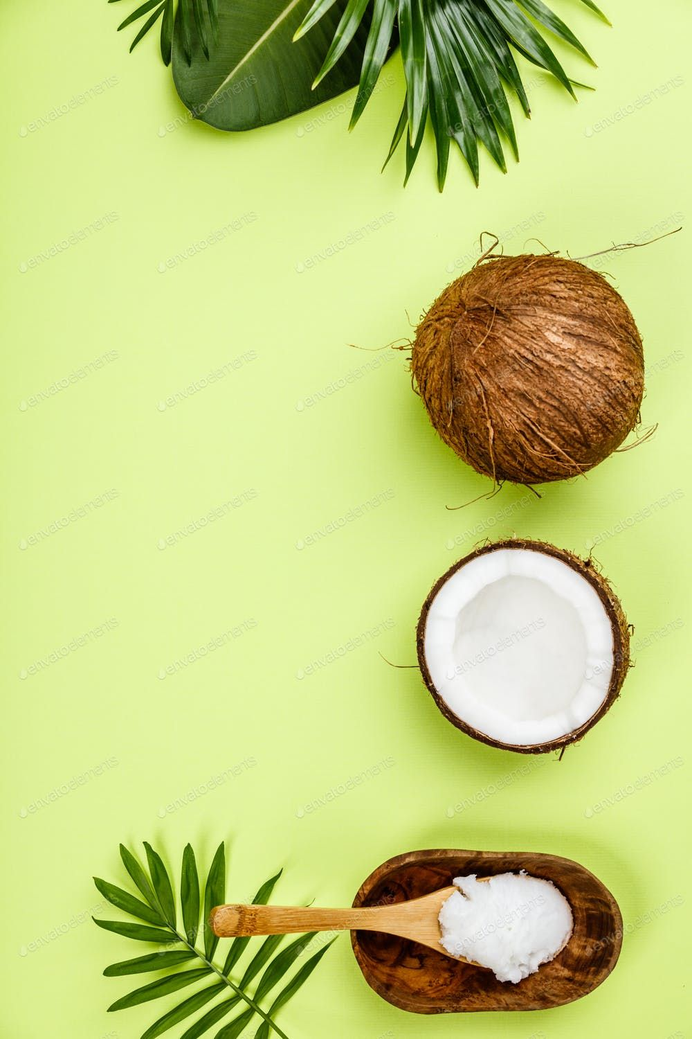 Coconut Oil Tropical Leaves And Fresh Coconuts By Klenova S