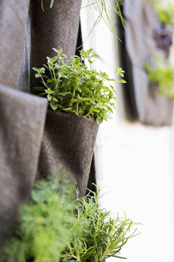 Kleiner Raum vertikaler Herb Garden #senkrechtangelegtekräutergärten
