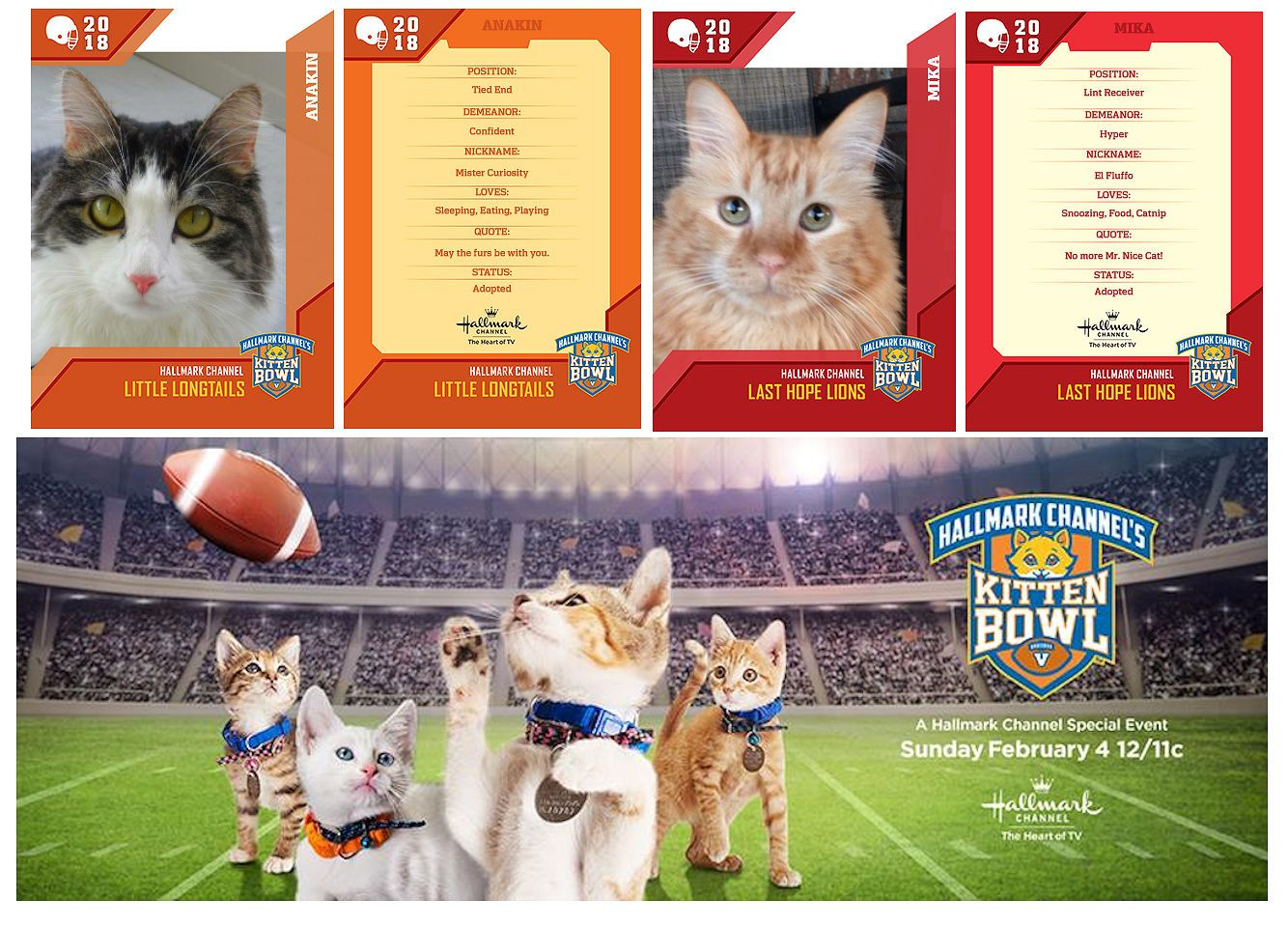 Exciting News Anakin Mika Are Going To Be On Kitten Bowl V Hallmark Channel Sunday February 4 12 11c Make Your Own Cat Kitten Bowls Kittens Cutest Kitten