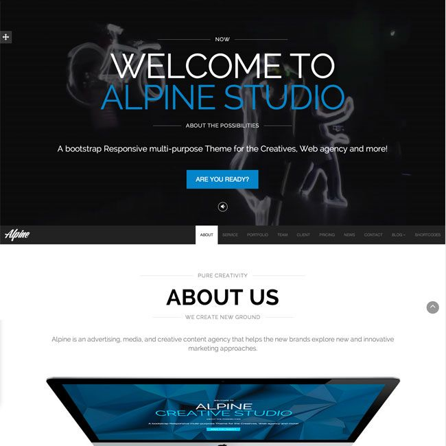Alpine Responsive One Page Parallax WordPress Theme | Best WordPress ...