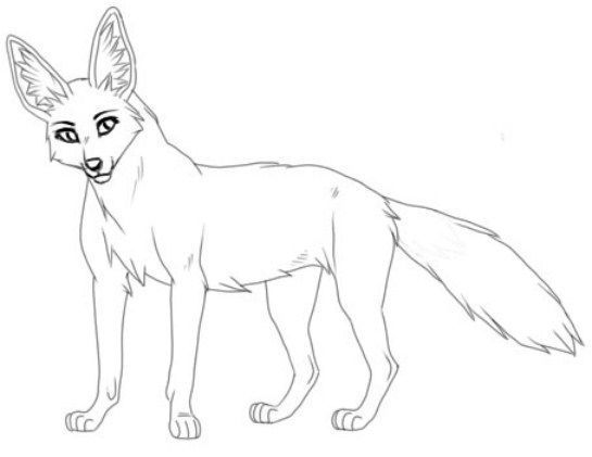 coyote animal coloring pages. This section includes  enjoyable colouring free printable homework Coyote coloring pages and worksheets for every age Jackal Coloring Pages