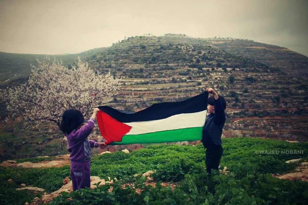 صور من الريف الفلسطيني قرية اللبن الشرقية شمال مدينة رام الله Outdoor Palestine Outdoor Decor